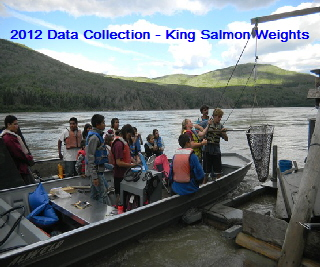 2012 King Weigh